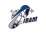 Internationale Basketball Akademie München JBBL