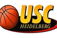 USC-Heidelberg