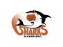 Sharks Hamburg JBBL